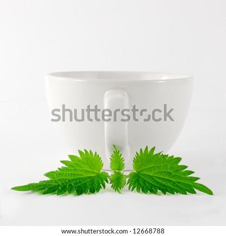 Herbal Nettle Tea Cup - stock photo