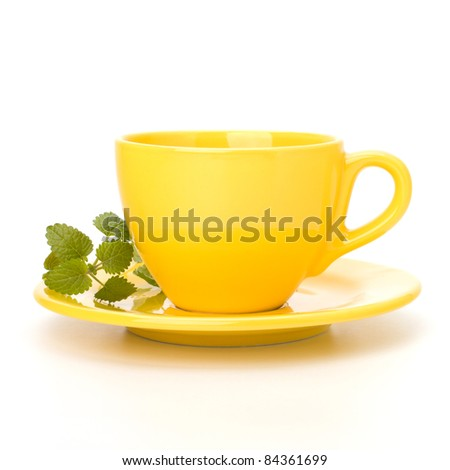 Herbal peppermint tea cup isolated on white background. Alternative medicine concept. - stock photo