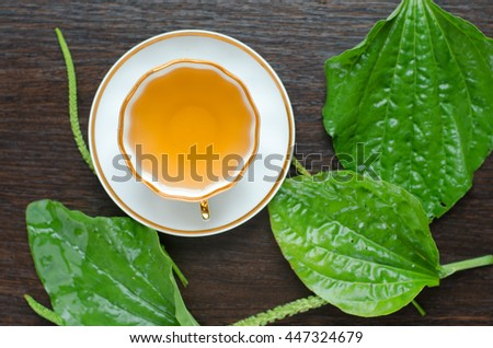 herbal plantain tea in a porcelain Cup on a dark wooden background