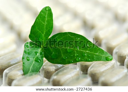 Herbal supplement pills close up with fresh green leaf - stock photo
