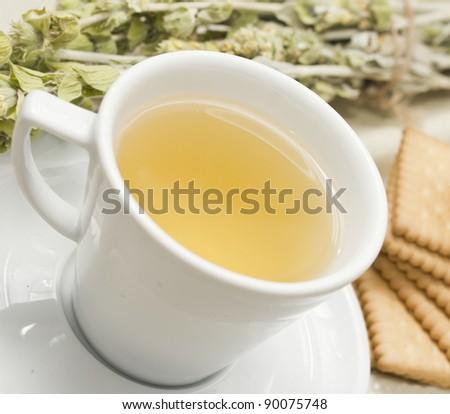 Herbal tea a, shallow dof - stock photo