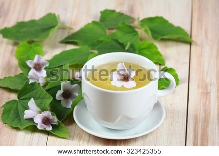 Herbal tea from marshmallow, lat. Althaea officinalis, good against  cough