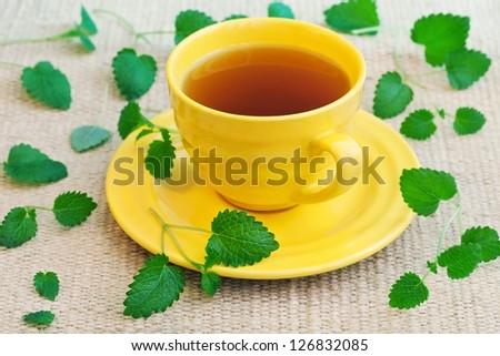 Herbal Tea  with a fresh lemon balm leaves on a table. - stock photo