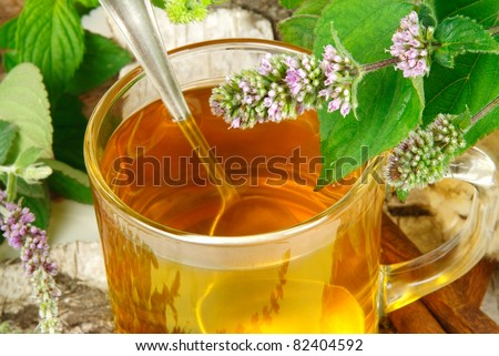 herbal tea with mentha - stock photo