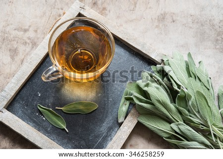 Herbal tea with sage - stock photo