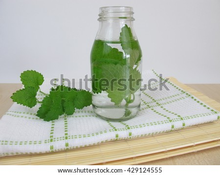 Herbal water with lemon balm