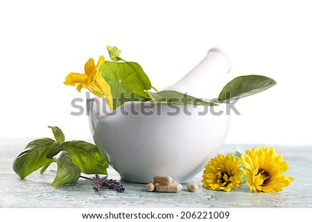 Herbs and flowers with alternative medicine herbal supplements and pills - stock photo