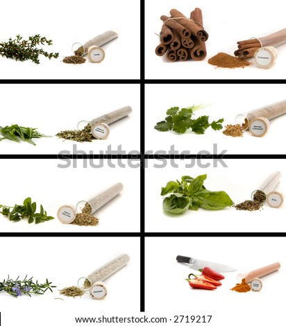Herbs and Seasonings Montage - stock photo