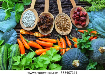 Herbs And Spice. Spice is a natural Use condiment Various type. - stock photo