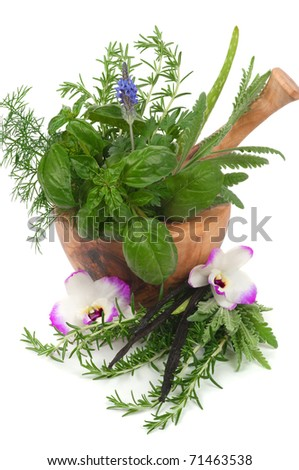 Herbs for alternative therapy and  aromatherapy - stock photo