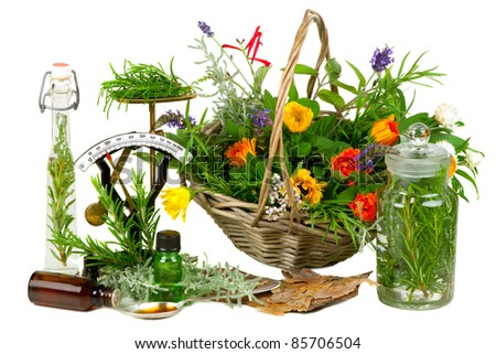 Herbs for medicine or cooking on white background - stock photo