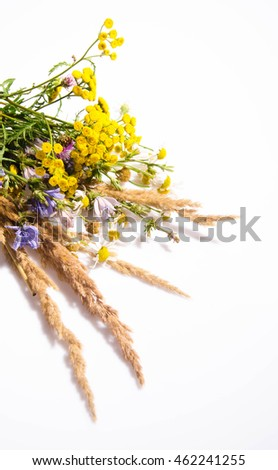 Herbs. Herbs from garden. Herbs on white. Healthy herbs. Fresh herbs on white background. Herbs isolated on white. Herbs green. Herbs for cook. Herbs for health. Herbs for grilling. Herbs garden.
