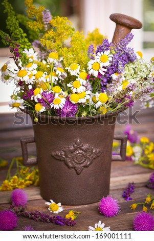 Herbs in the mortar - stock photo