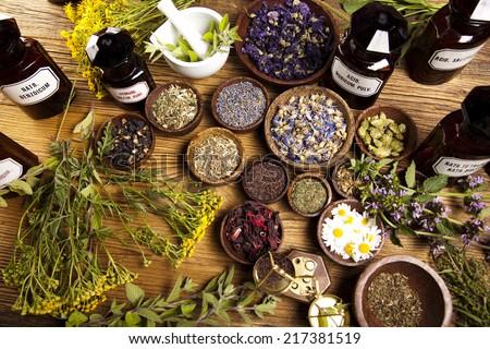 Herbs medicine  - stock photo