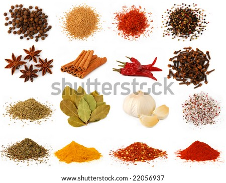 Herbs spices - stock photo