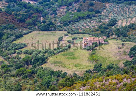 Herd of sheep on beautiful mountain meadow in Spain