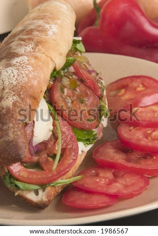 Hero sub sandwich with tomatoes, cheese and prosciutto ham on crusty bread - stock photo