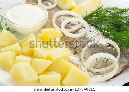 Herring and potatoes with sauce, onions a lemon and fennel, on a dish