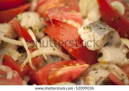 Herring with onions and tomatoes - stock photo