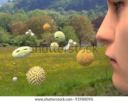 Heuschnupfen / hay fever