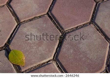 hexagon walkway - stock photo