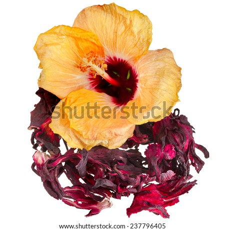 Hibiscus flower tea isolated on white background - stock photo