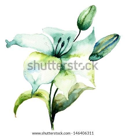 Hibiscus flower,watercolor painting - stock photo