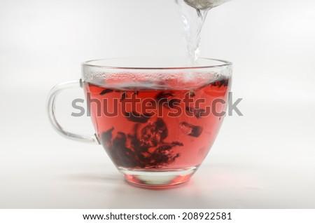 hibiscus tea infusion - stock photo