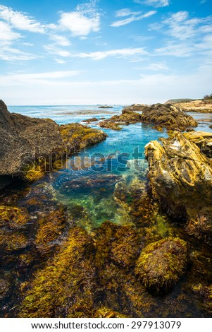 Hidden Beach, Point Lobos State Natural Reserve, Carmel, California, USA - stock photo
