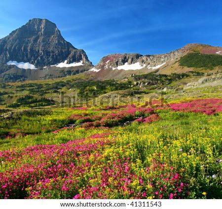 Hidden Lake Trail, Logan Pass, Glacier National Park, Montana, United States - stock photo
