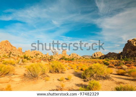 Hidden Valley Rock Joshua Tree Big Rocks Yucca Brevifolia Mojave Desert Joshua Tree National Park California USA - stock photo