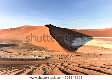 Hidden Vlei in the southern part of the Namib Desert, in the Namib-Naukluft National Park of Namibia.
