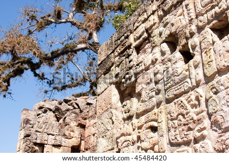 Hieroglyphs carved into rock on the Temple of Inscriptions at the ancient Mayan ruins of Copan. Honduras, Central America. - stock photo