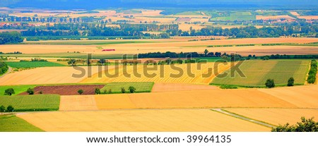 High-angle shot of golden cornfields before harvesting - with a little red train - stock photo