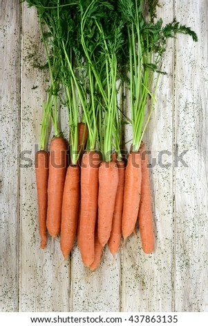 high-angle shot of some raw carrots with their leaves on a rustic white table - stock photo
