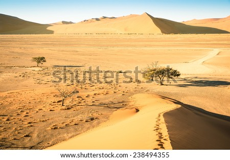 High angle view from the top of Dune 45 on the way to Deadvlei near Sossusvlei - Namibian world famous desert - African nature wonder with wonderful wild landscape in Namibia near South Africa - stock photo
