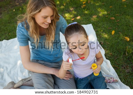 High angle view of a mother with her daughter blowing soap bubbles at the park - stock photo