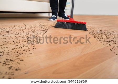 High angle view of broom cleaning dirt on hardwood floor at home - stock photo