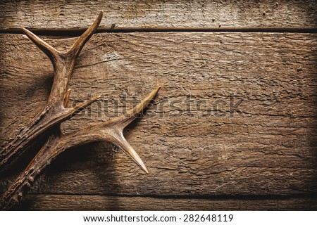 High Angle View of Deer Antlers Against Rustic Wooden Background with Copy Space - stock photo