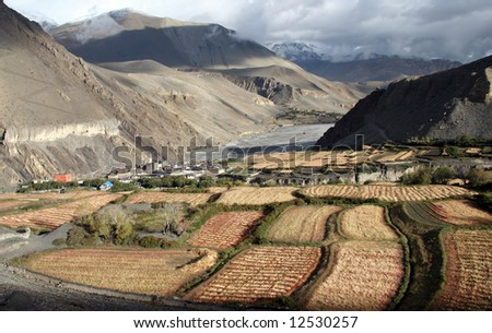 High angle view over the cultivated fields around the village. Kagbeni, Annapurna trekking, Himalaya, Nepal - stock photo
