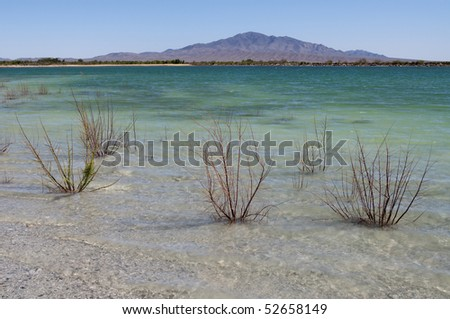High calcium levels turn the water blue-green in Crystal Reservoir, Ash Meadows National Wildlife Refuge - stock photo