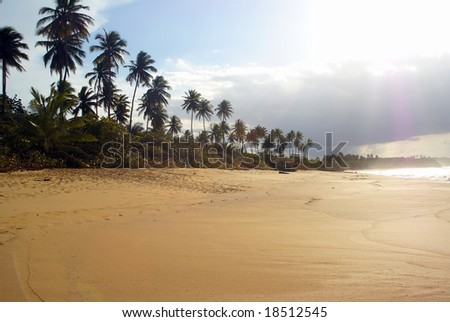 High contrast tropical beach scene wide horizontal - stock photo