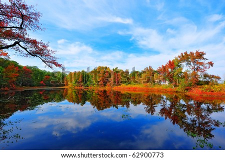 High Dynamic Range photo of Autumn colors reflecting in a pond next to the Chesapeake Bay in Maryland - stock photo