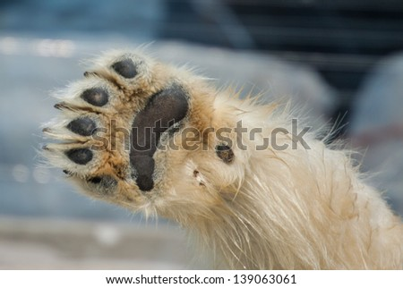 high five  - stock photo
