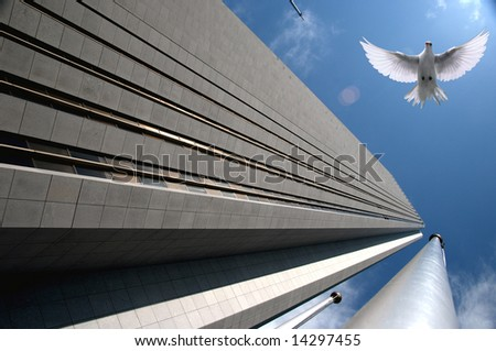 High Flier - stock photo