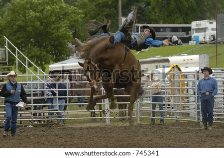 high flying - stock photo