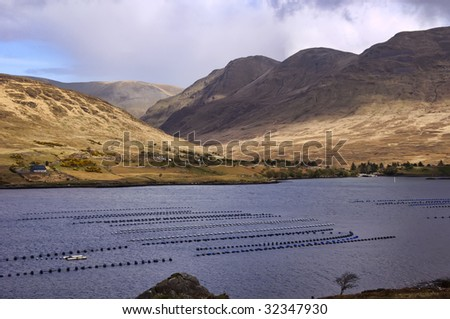 Farm salmon stock photos images pictures shutterstock - Trout farming business family mountains ...