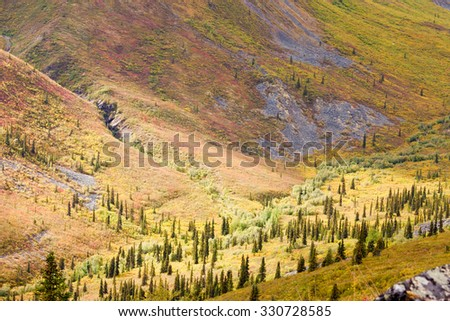 High mountain valley at timber line where alpine tundra begins and boreal forest taiga ends - stock photo