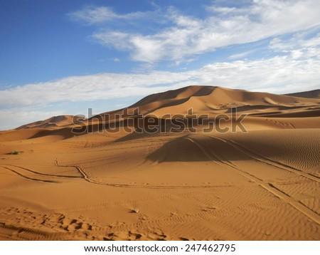 High orange sand dunes in Sahara desert in the evening - stock photo