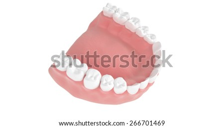 high quality 3d model of the teeth , lower jaw with the top view on a white background - stock photo